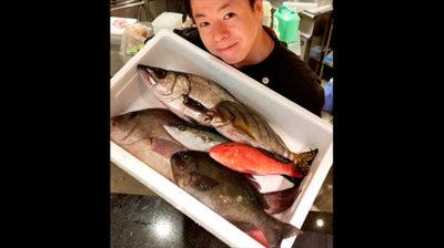 南の島のお魚