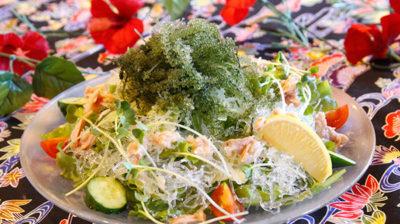 プチプチ海ブドウてんこ盛りサラダ